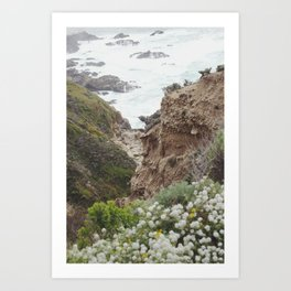 big sur flowers Art Print