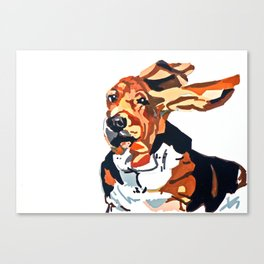 Basset Hound Flying Ears Portrait Canvas Print