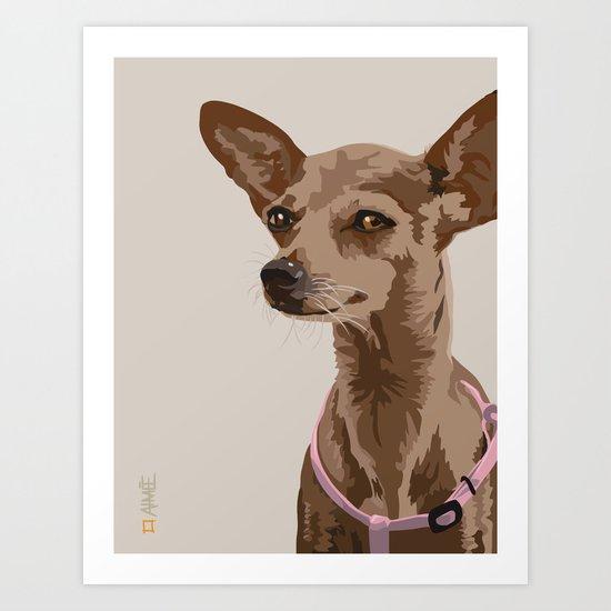 Macy the Chihuahua Dog Art Print