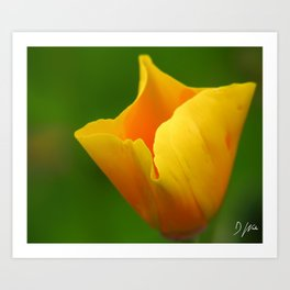 Glowing Yellow Art Print