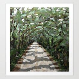 Cumberland Island canopy Art Print
