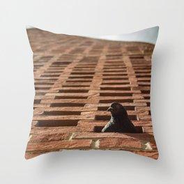 Pigeon-holed? Throw Pillow