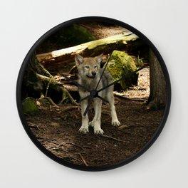 Timber Wolf Pup Wall Clock
