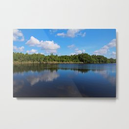Gator Lake II Metal Print