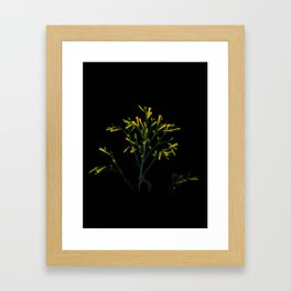 Yellow flowers & Green plant - 123 Framed Art Print