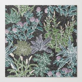 Weeds Canvas Print