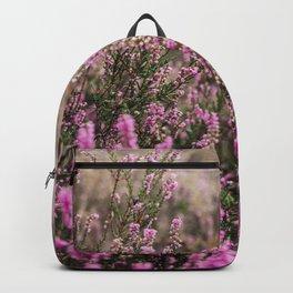 Dutch Heather - National Park Veluwezoom - Botanical Nature Art - Purple flowers Backpack