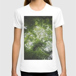 Up in the Trees Above T-shirt