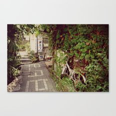 Away from the Crowd Canvas Print