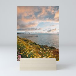 Over Scripps 01 Mini Art Print