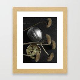 Silver Fruit 3 Framed Art Print