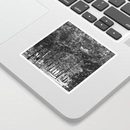 Black-and-White Woods Sticker