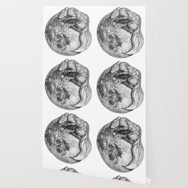 Moon Fox Wallpaper