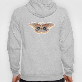 Polyphemus Moth Hoody