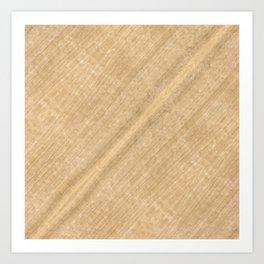 White Oak Wood Art Print