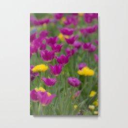 Purple Tulps Metal Print