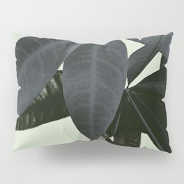 Pachira Aquatica #3 #foliage #decor #art #society6 Pillow Sham