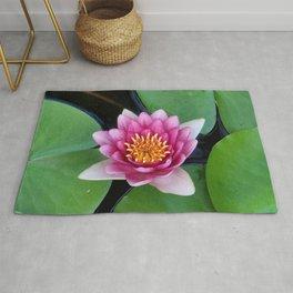 lotus flower in jeju island of south korea. Rug
