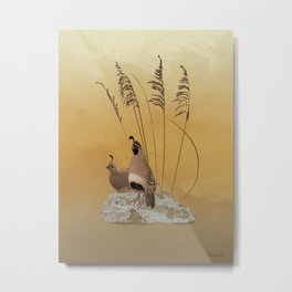 California Valley Quail Metal Print