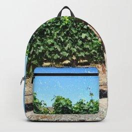 Santa Barbara Vineyard Backpack