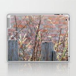 Inner World_version 2.0 Laptop & iPad Skin