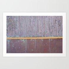 the salty door  Art Print