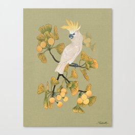 Cockatoo and Ginkgo Tree Canvas Print