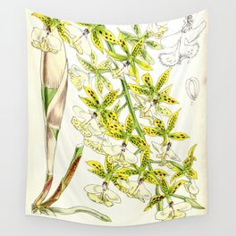 A orchid plant - Vintage illustration Wall Tapestry