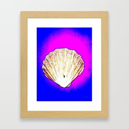 White Shell Framed Art Print