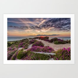 Headon Hill Sunset Isle Of Wight Art Print