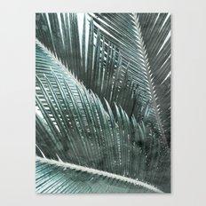 Simply Palms Canvas Print