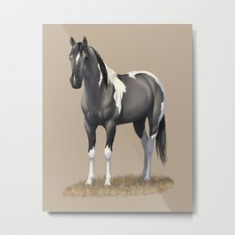 Grulla Paint Horse Metal Print