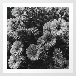 FLOWERS - FLORAL - BLACK AND WHITE Art Print