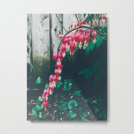 Summer rain weather Metal Print