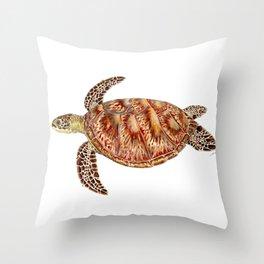 Green turtle Chelonia mydas Throw Pillow