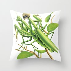 Safe sex for mantis Throw Pillow
