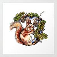 Squirrel - Colour Art Print