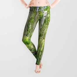 Aspen Trees Leggings