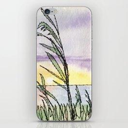 Chesapeake Bay Beach iPhone Skin