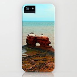 Holy Perch iPhone Case