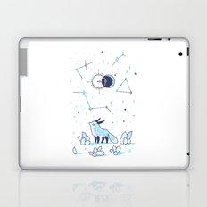 Arctic Nights Laptop & iPad Skin