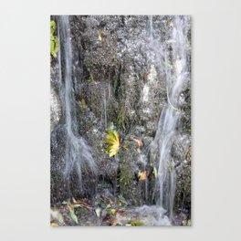small watercourse, color photo Canvas Print