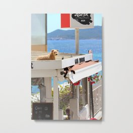 Dog on a Hot Tin Roof Metal Print