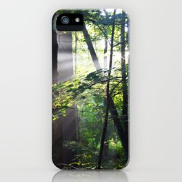 Cabin Light iPhone Case