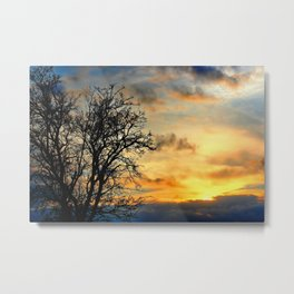 Tree Silhouettes at Sunset  Metal Print