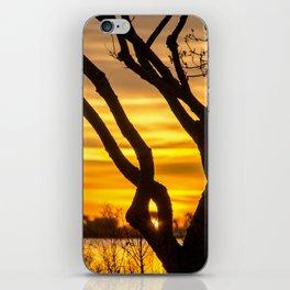 Tree Sunrise iPhone Skin