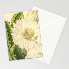 Strophocactus testudo Stationery Cards