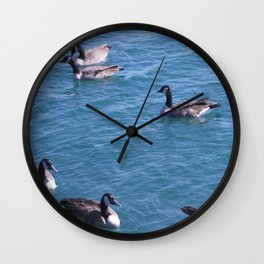 Ducks, Mallard Ducks, Lake Michigan Wall Clock
