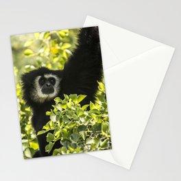 Black monkey Stationery Cards