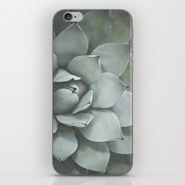 Agave no. 2 iPhone Skin